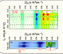 MOLCAS 8: New Capabilities for Multiconfigurational Quantum Chemical Calculations across the Periodic Table