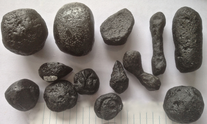 Examples of Belize tektites (the largest is 103 grams) © P. Rochette