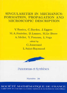 Singularities in Mechanics: Formation, Propagation and Microscopic Description