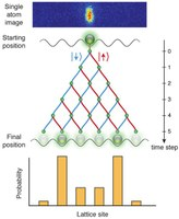 Quantum walks with neutral atoms: A look into the motion of a quantum particle
